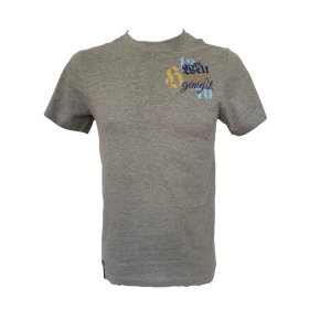 T-shirt Hirter Die Welt grau Herren